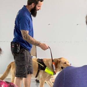 barney guide dog in training with his trainer Merry at guide dogs uk national breeding centre warwickshire