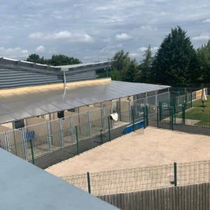 view of the outside kennel areas at Guide Dogs UK Nagtional Breeding Centre – Warwickshire